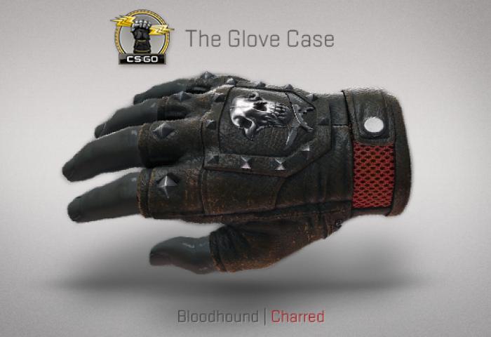 bloodhound-charred